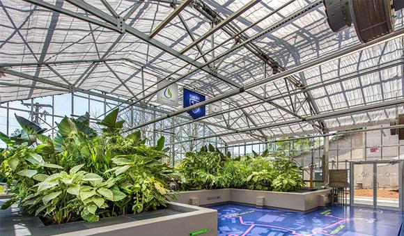 Technologies - Waterhub greenhouse plants reclaimed water reuse